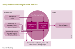 Policy interventions in agricultural demand