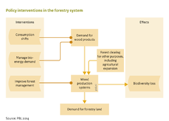Policy interventions in the forestry system