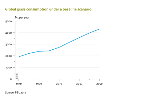Global grass consumption under a baseline scenario