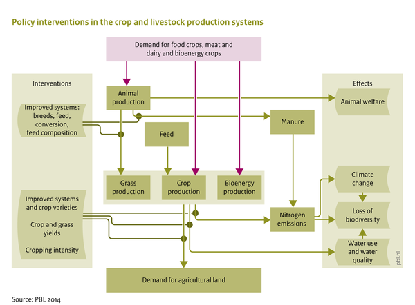 Policy interventions in the crop and livestock production systems