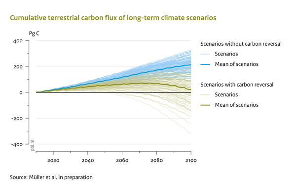 Cumulative terrestrial carbon flux of long-term climate scenarios