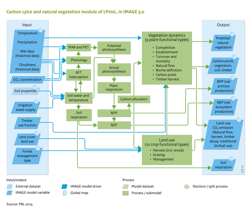 Flowchart carbon cycle and natural vegetation image carbon cycle and natural vegetation module of lpjml in image 30 ccuart Choice Image